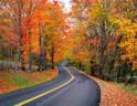VT in autumn