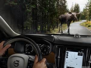 Animal detection Volvo