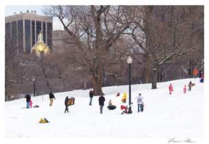 boston-common-sledding